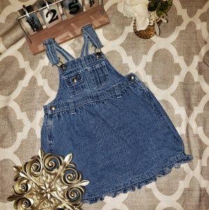 Vintage Arizona Jean's Denim Overall Skirt